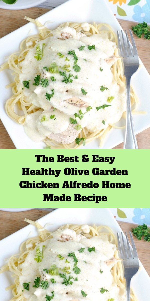 The Best and Easy Healthy Olive Garden Chicken Alfredo Home Made Recipe