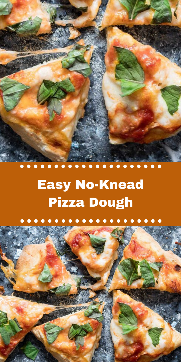 Easy No-Knead Pizza Dough